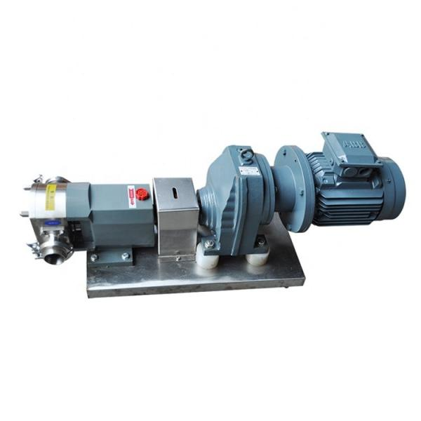 KAWASAKI 705-22-40070 WA Series Pump #1 image